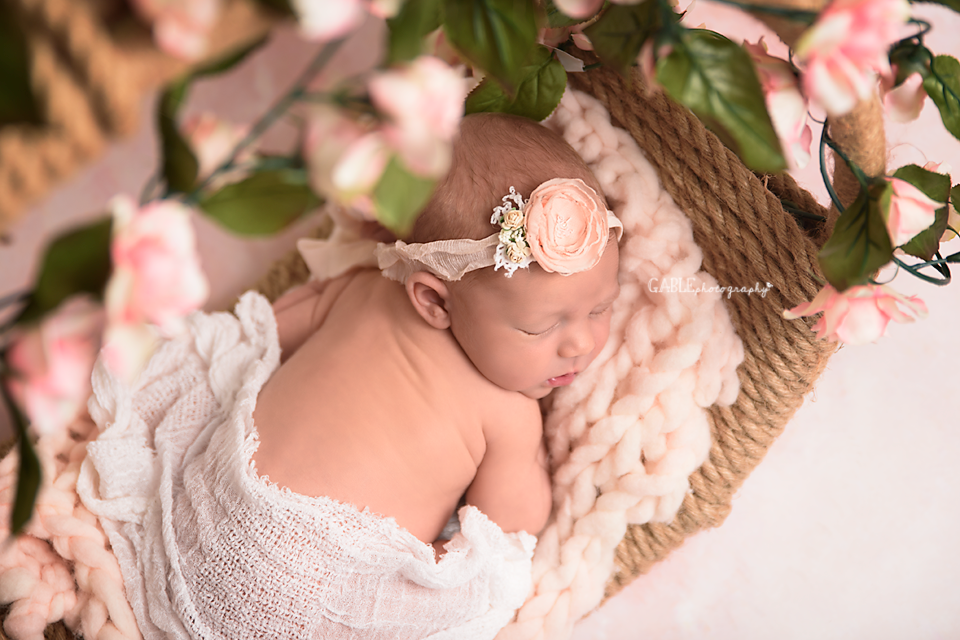 Newborn baby photography, Columbus ohio