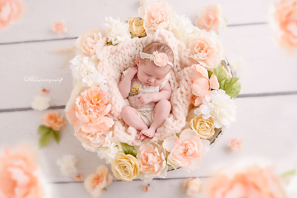 Butterfly Newborn Baby
