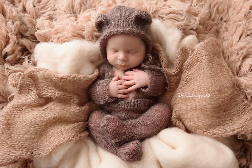 baby bear newborn photograph