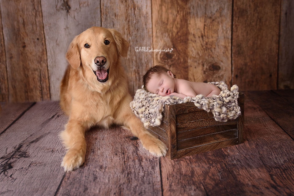 newborn with dog photoshoot