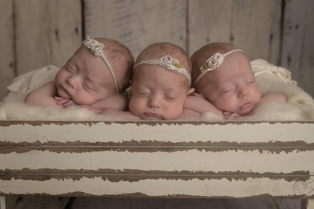 Triplet Newborn photographer columbus ohio