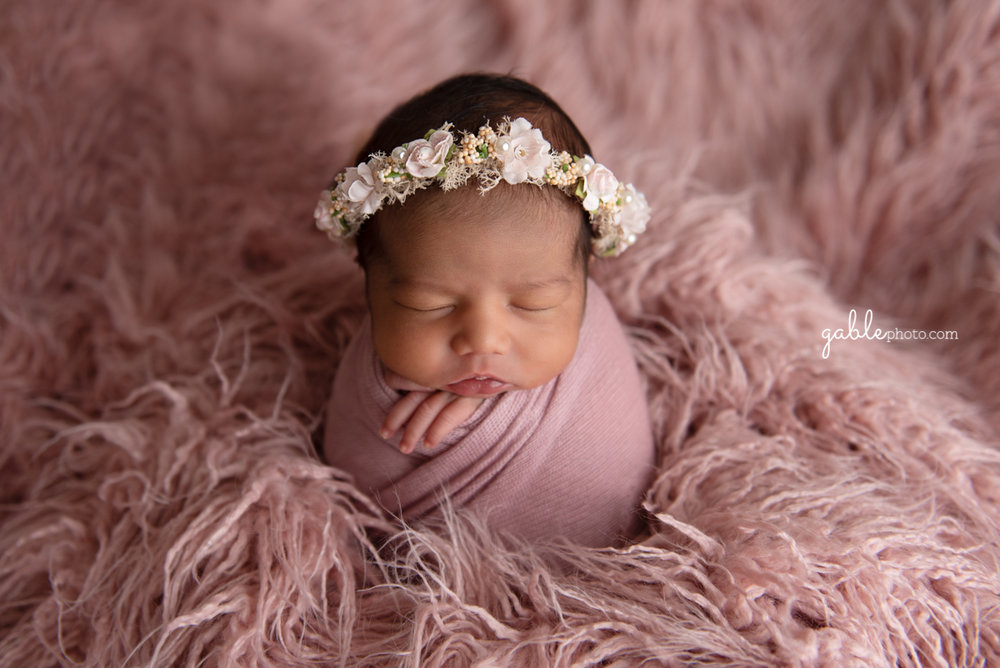 newborn photographer ohio