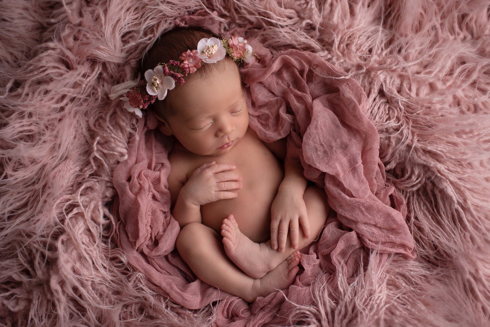Newborn-photographer-columbus-ohio-baby-girl16.jpg