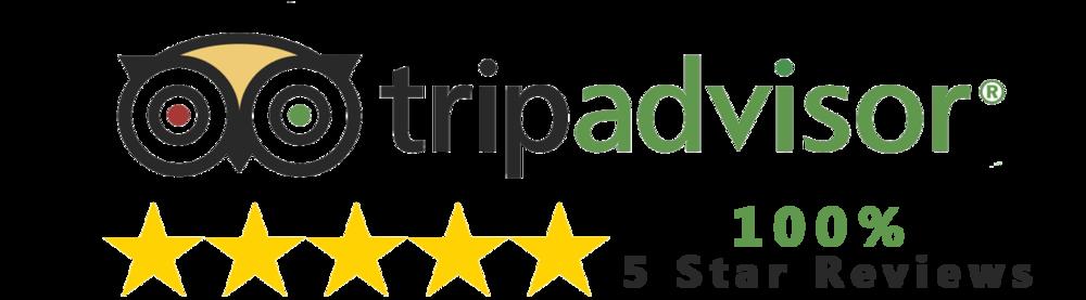 trip advisor reviews4.png