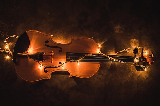 violin-2921485_640.jpg