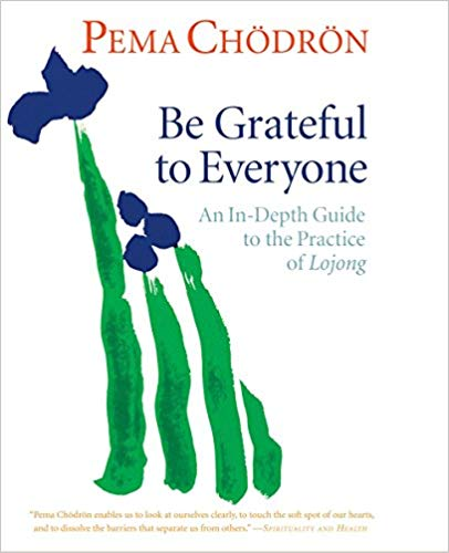 I have this as audio-book, as it is great to hear Pema explain the workings of Lojong.