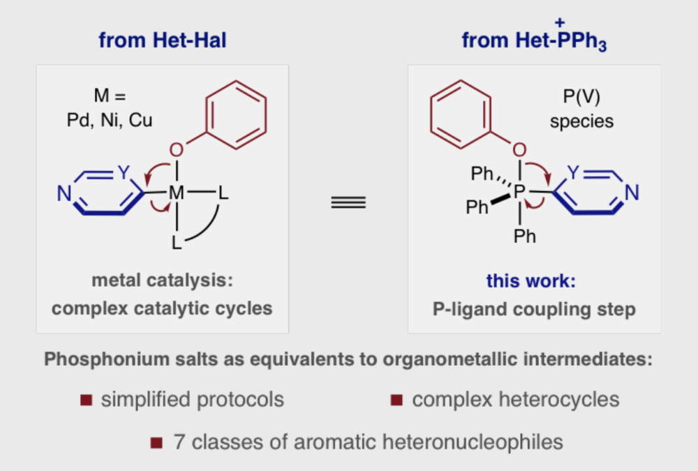 aromatic heteronucleophiles.PNG