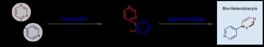 Ligand Coupling.png