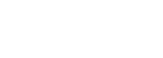 Story Dems
