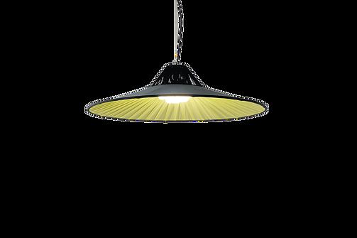 SIAM LAMP