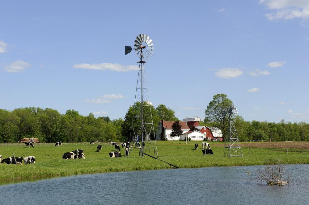 Farm005 (credit TAUNY).jpg