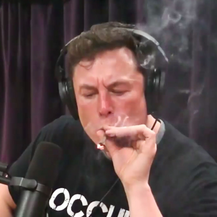 Elon Musk on     The Joe Rogan Experience     committing a felony (smoking cannabis is not a felony in California)