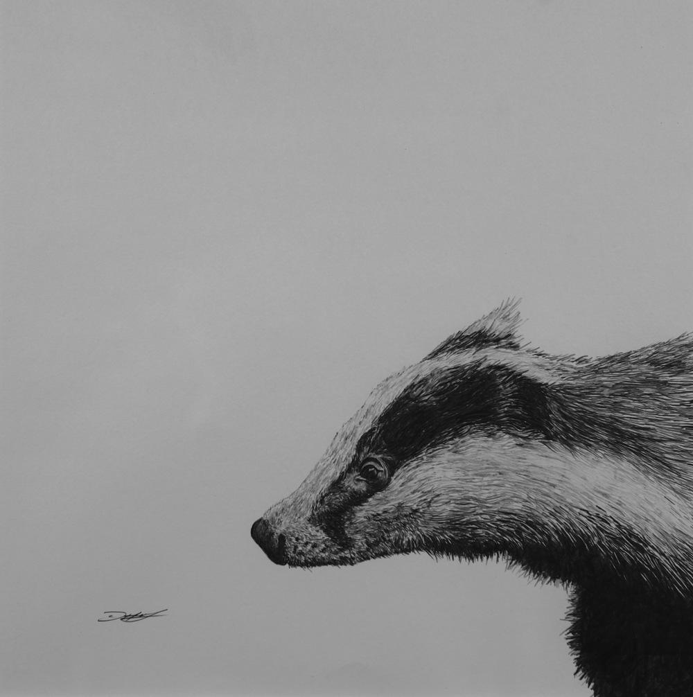 small drawings david hunt