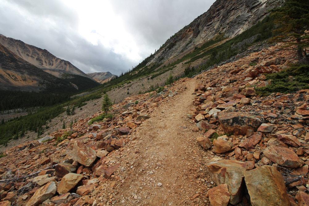 Tonquin Valley Trail, Jasper National Park, Alberta, Canada
