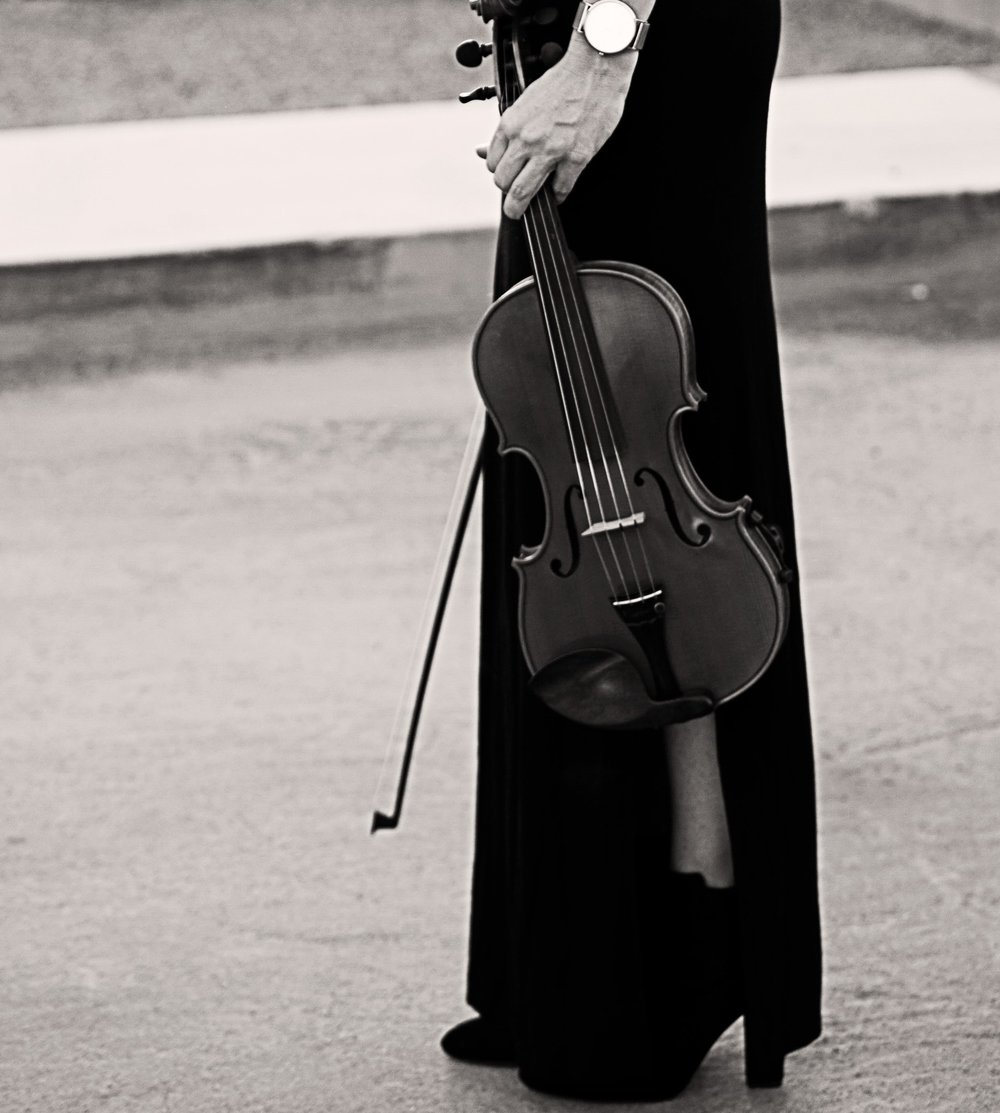 black-and-white-violin-standing.jpg