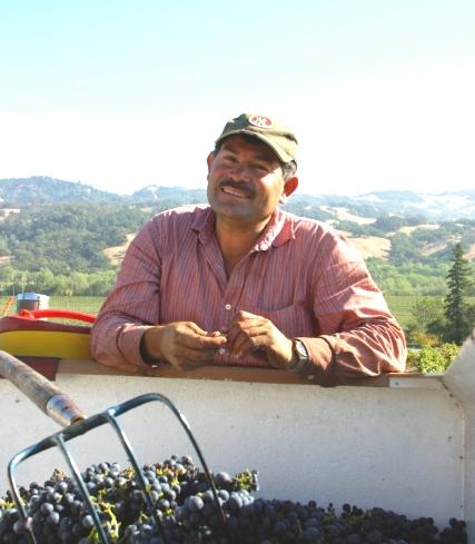 Juan Favela Harvest 05.jpg