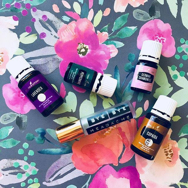 {Repost from @theholisticnest} ... Buh Bye Headaches! 👋🏼 ... Experimenting with some #essentialoil blends for #headaches today! As chiropractors, headaches are quite possibly THE most common #health concern we see in our office! Causes range from hormone imbalances, circulatory problems, #stress, #dehydration, sugar imbalance (#hypoglycemia), structural (spinal) misalignments, & #hypertension. The majority of #migraines are due to colon congestion or poor #digestion. This is why there is no ONE fix for everyone but our mission is to ALWAYS support our patients in anyway possible & find the root cause of their pain! ... How in the world can essential oils help with headaches?! I'm so glad you asked! 😉 Placebo-controlled, double blind studies have found that EOs are just as effective in blocking #pain from tension-type headaches as Tylenol! 🤯 Essential oils ✨promote circulation, reduce muscle spasms, & decrease #inflammation.✨ Yep, I think that's pretty cool too! ☺️ ... Here's what we whipped up in this little roller!👇🏼 ▫️20 drops lavender ▫️20 drops peppermint ▫️20 drops german chamomile ▫️20 drops copaiba *Top with carrier oil & apply to temples {keep away from eyes!}, back of neck, and across shoulders!* ... P.S. I LOVE making samples for others to try! DM us if you would like one! 💜