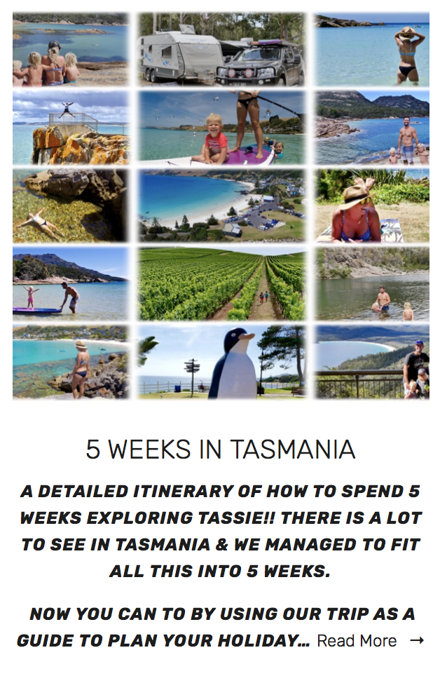 35 days of crazy Road Tripping - Tasmania will blow your mind!!