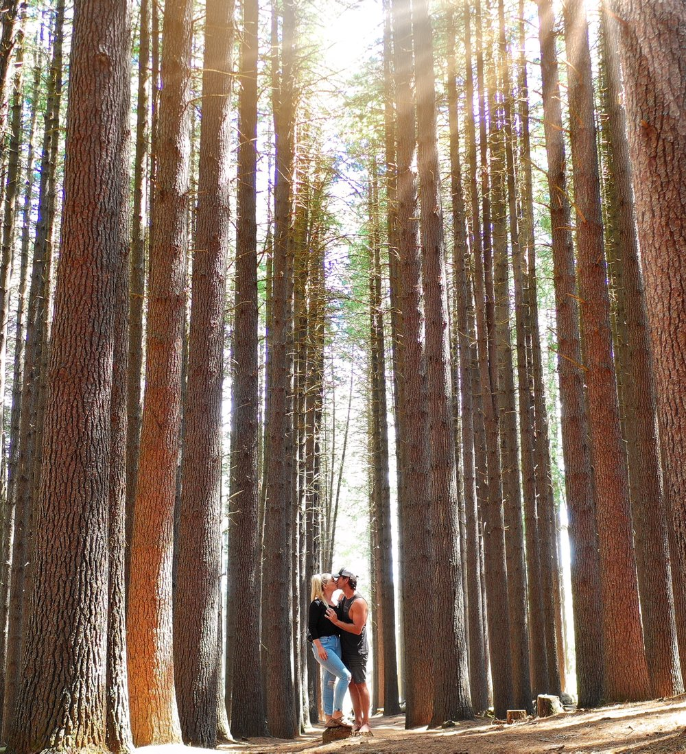 The Sugarpines walk is a great spot for a romantic photo!!