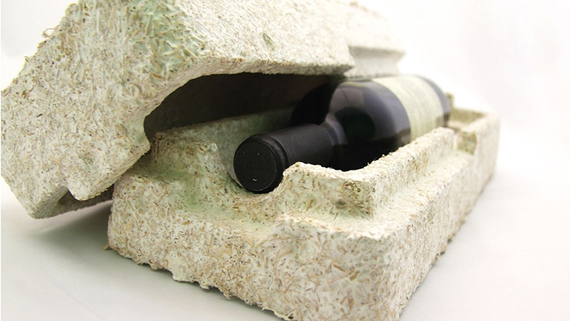 Ecovative-Company-Makes-Packaging-Out-Of-Mushrooms-1.jpg