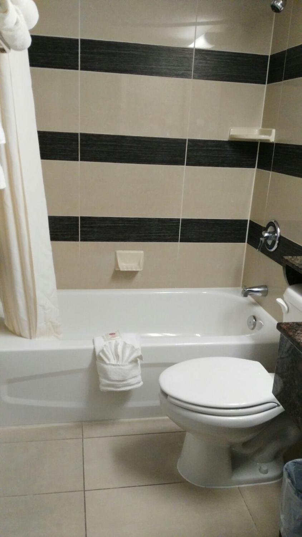 comfort-suites-downtown-3.jpg