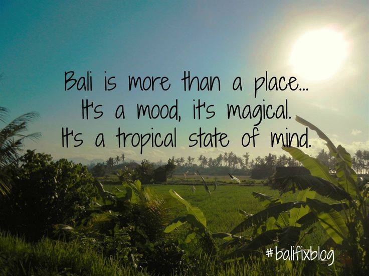 Eat Pray Yoga Seeking Balance In Bali Msl