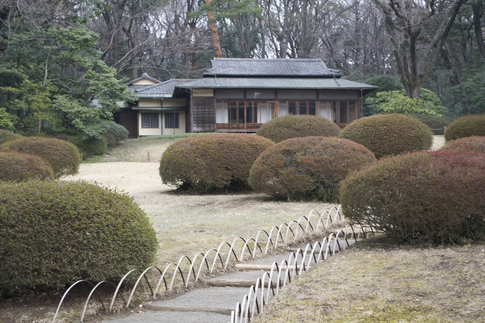 tokyo garden.jpg