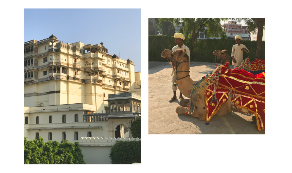 Left: Devigarh palace. Right: Camels ready for their jaunt around the village.