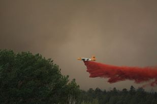 Slurry bomber drops fire retardant on the trees.