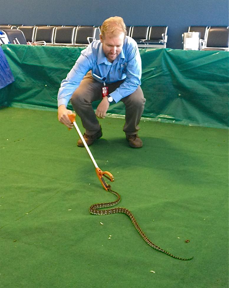 Dan, Snake Wrangler