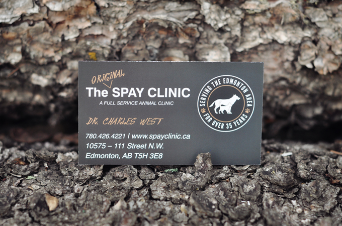 The Spay Clinic Business Cards