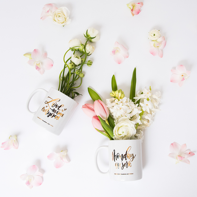 PRODUCT PHOTOGRAPHY – JUSTINE MA & MISSCHRISYCHARMS MUGS-DSC_0046