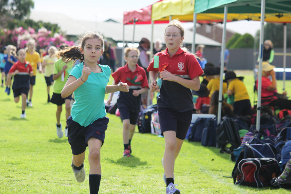 Primary Sports Day 2016 5.JPG