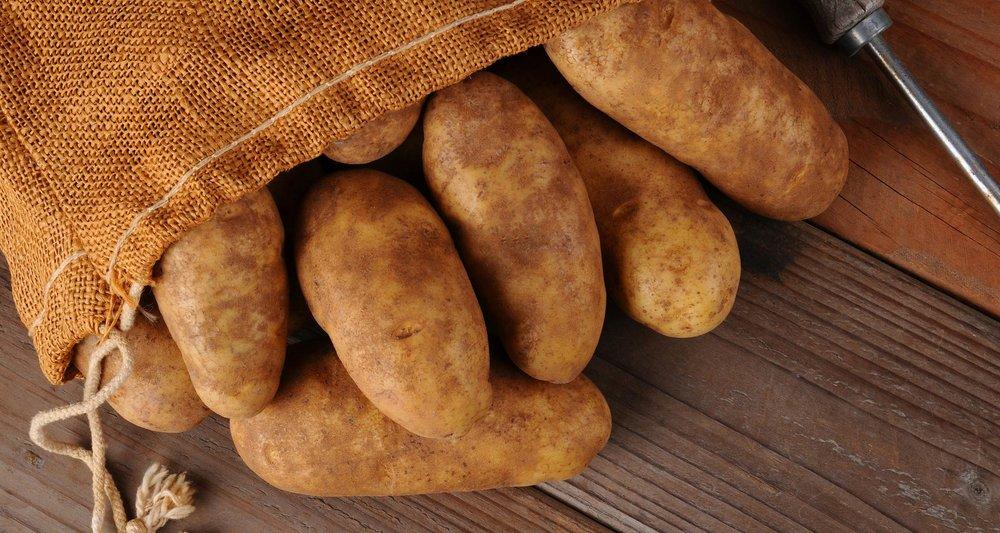blog-featured-potatoes-20180808.jpg