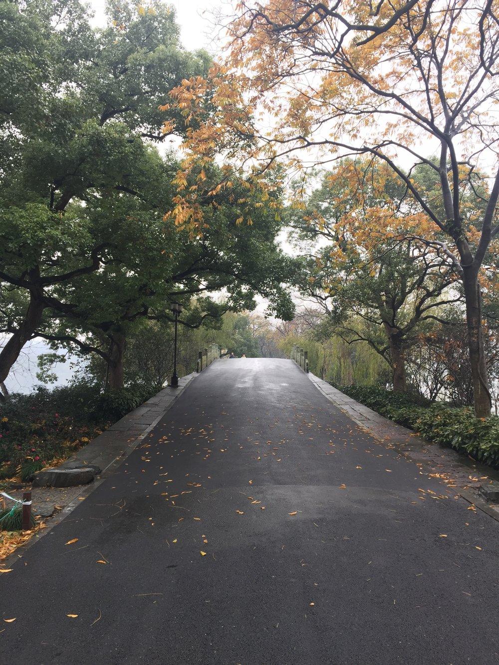 Long Road through the Lake