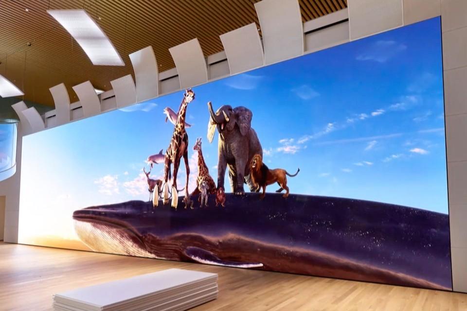 https___hypebeast.com_image_2019_04_sony-16k-crystal-led-tv-screen-1.jpg