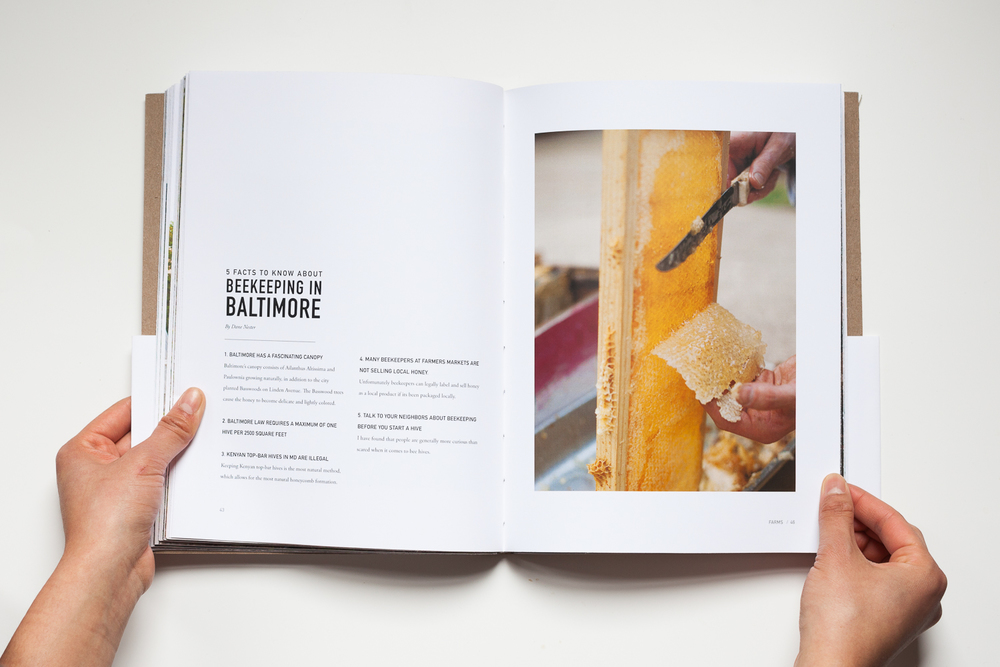 Baltimore's Bounty-042.jpg