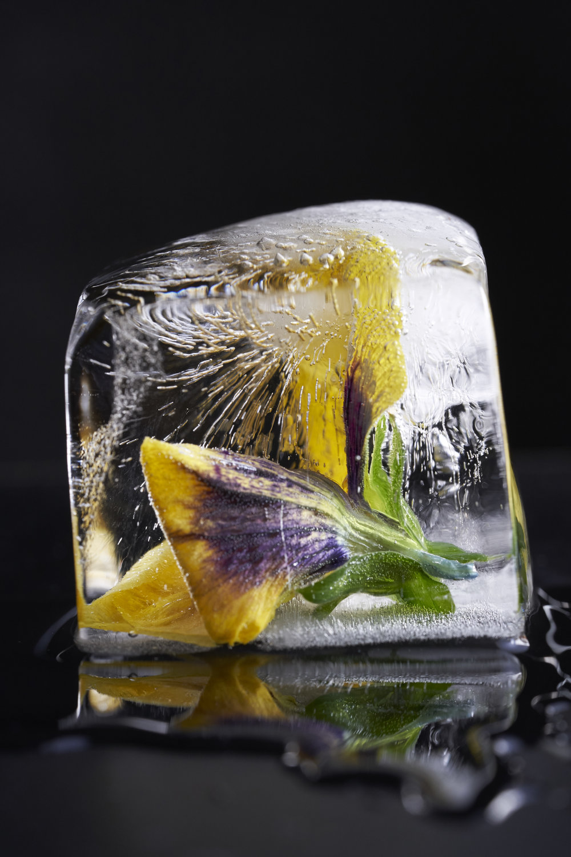 Ice_0363.jpg
