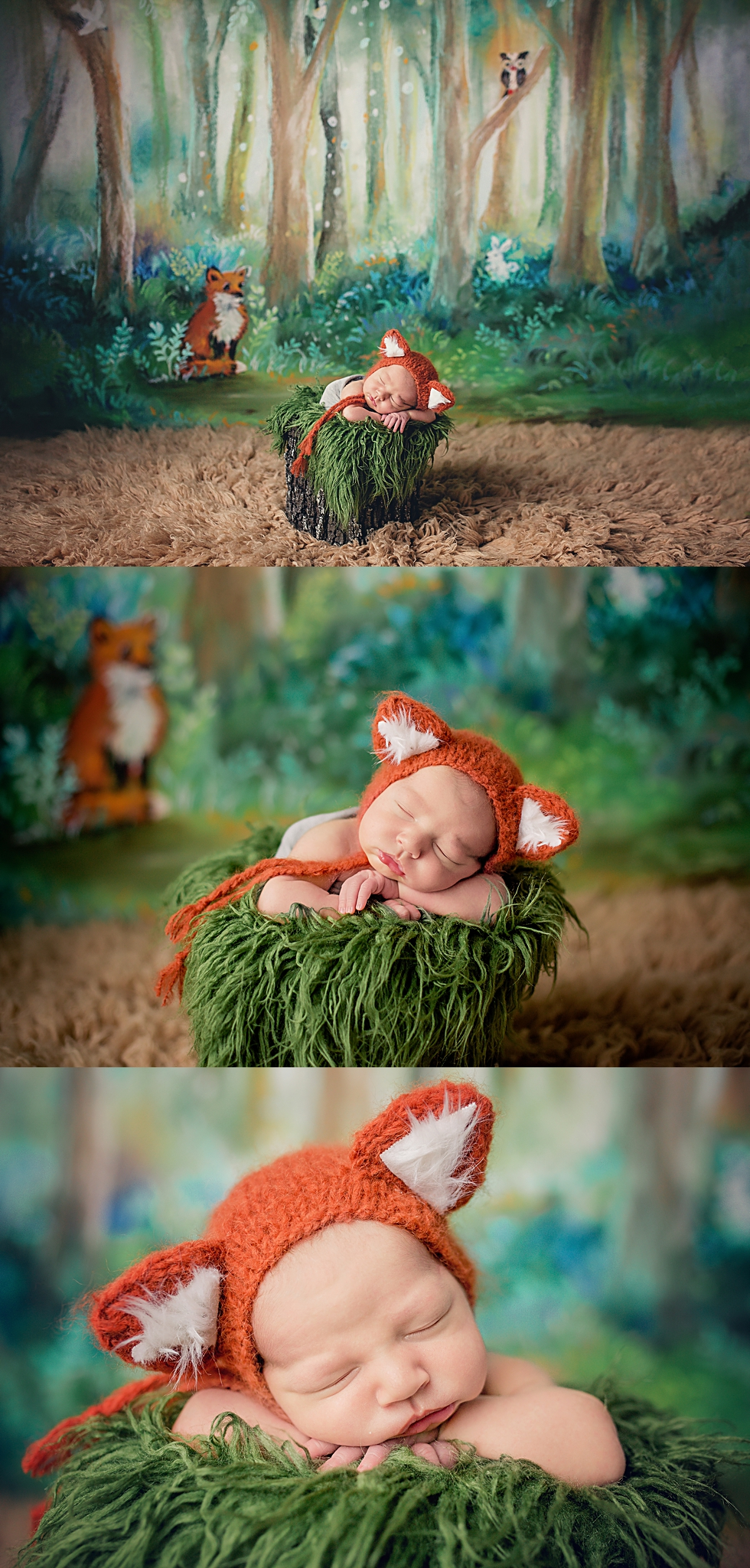 A woodland theme I have been dying to try & this little fox was the perfect little critter for the set.