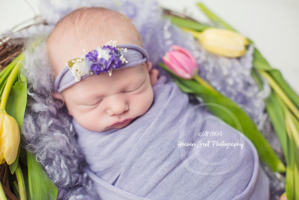 zoey_newborn (13 of 44).jpg