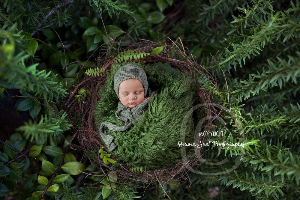 scotty_newborn (2 of 65).jpg