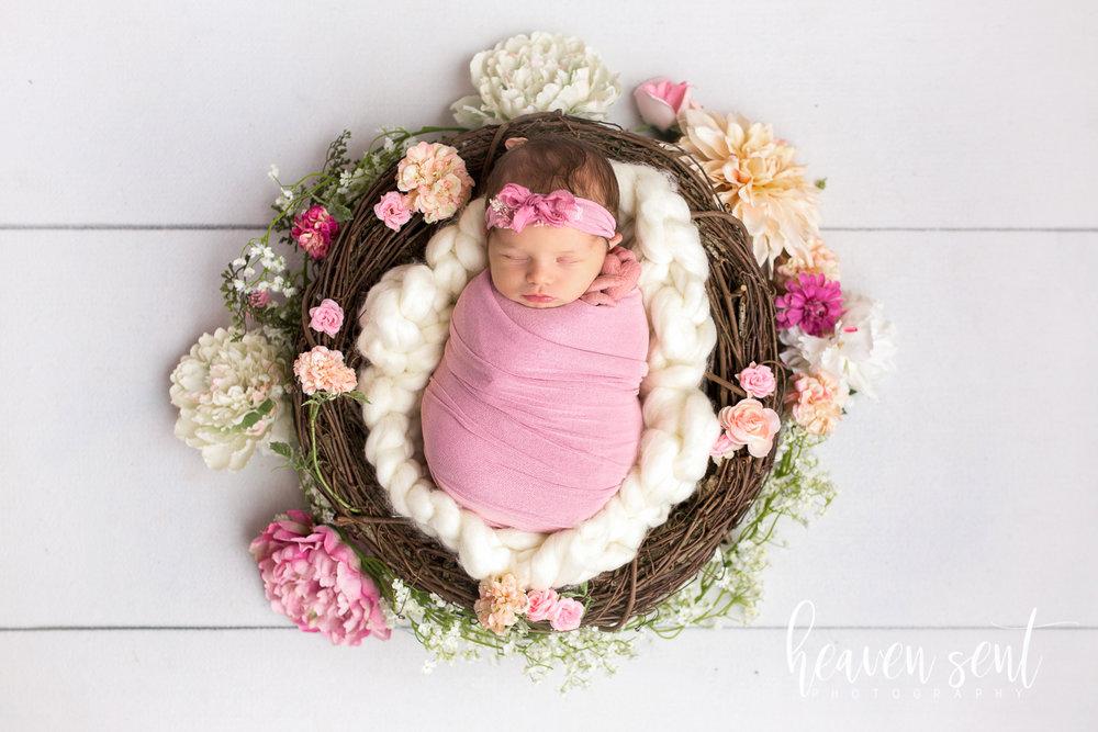 lauren_newborn(56of92).jpg