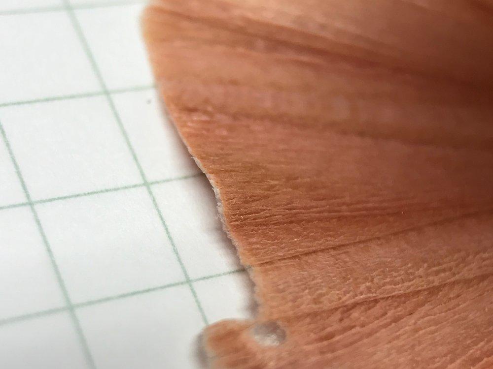 kirin-woody-pal-eddy-pencil-8.jpg