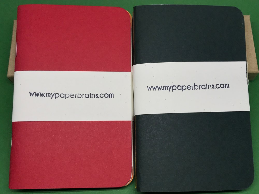 my-paper-brains-pocket-notebooks-1.jpg