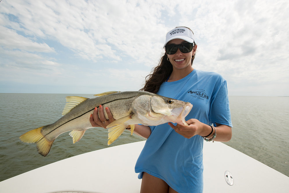 Snook Fishing Naples
