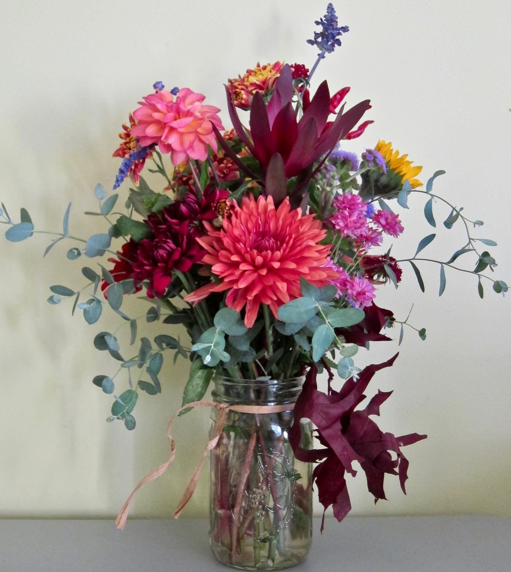 COUNTRY MASON JAR    Large dahilias, sunflowers, leukodendron, mums with grey-green eucalypti and mahogany oak leaves.. Each week something new is blooming for our seasonal country bouquet, $40 to $45.