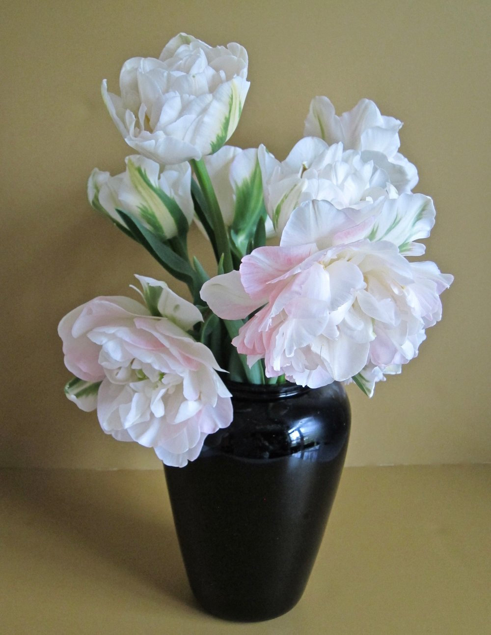 SIMPLE DRAMA   A few large seasonal premium flowers, such as angelica tulips, peonies, or garden roses in a black ceramic vase.