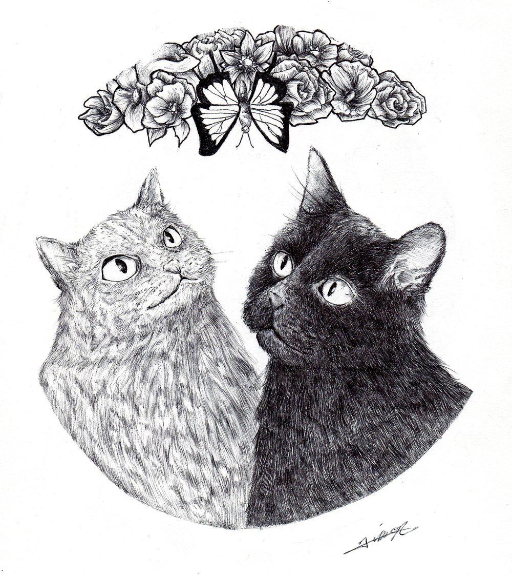 butterfly_cats.jpg