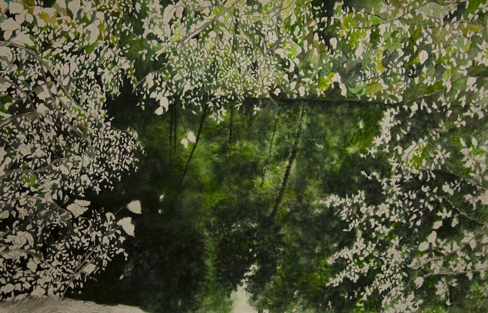 """""""Detrás de las plantas"""", from the series """"Paisajes"""", watercolour on cotton paper, 66 X 102 cm., 2014."""