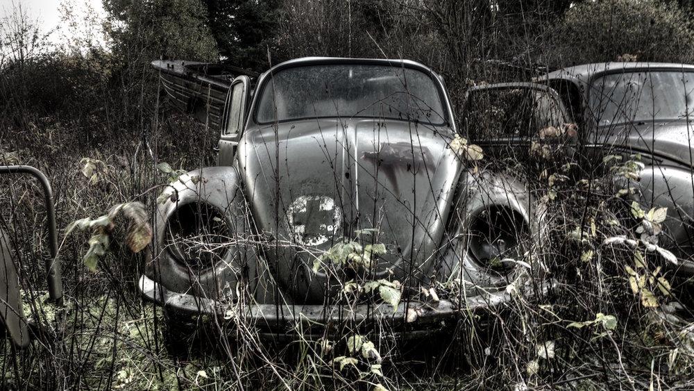 Saving Private Beetle.jpg